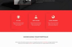Bird View Business Website PSD Template