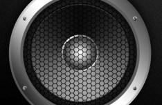 Generic Speaker Vector PSD