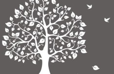 Hand Drawn Big Tree and Birds Illustration Vector