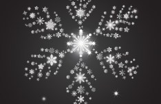 Bright White Snowflake For Christmas Design Vector