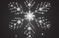 Bright White Snowflake For Christmas Design Vector