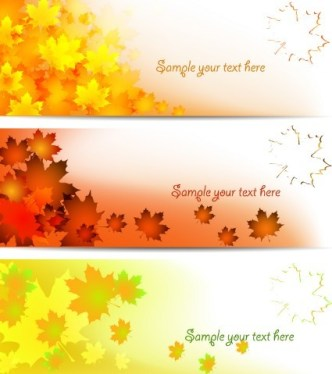 Set Of Fall Yellow Maple Leaf Banners Vector