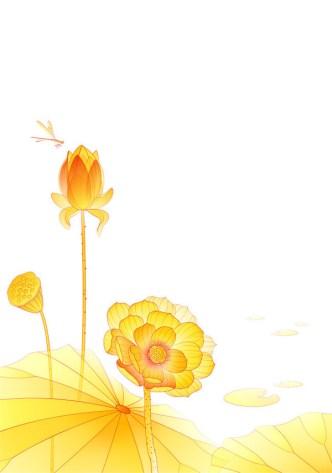 Hand Drawn Yellow Lotus Flower Vector Illustration