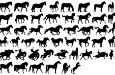 Set Of Vector Horse Silhouettes