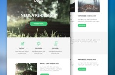 Delize Email PSD Theme
