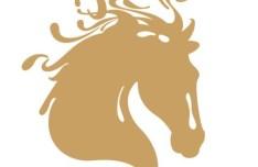 Creative Horse Head For The Year 2014