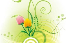 Vector Illustration Of Spring Flowers 05