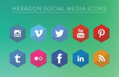 Flat Hexagon Social Icons Vector