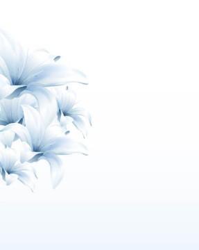 Fresh Flower Background Vector 05