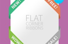 Silky Web UI Flat Corner Ribbons Set