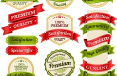 Green Product Badge & Label with Ribbon Vector Set