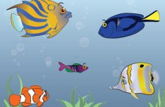 Tropical Fish Vector Illustration Pack