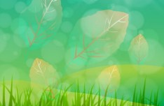 Spring Time Vector Background