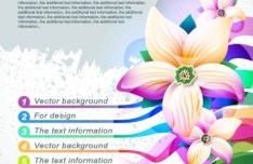 Colorful Flower Text Information Background Vector