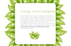 Green ECO Text Frame Vector