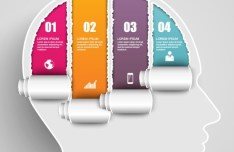 Torn Paper Brain Infographic Elements Vector