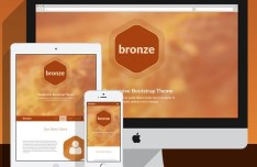 Bronze Responsive Bootstrap Theme PSD