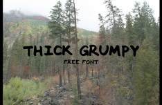 THICK GRUMPY Font