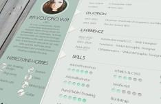 Mint CV Design