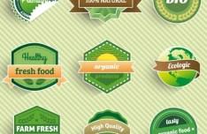 Green Health Food Badge Set Vector