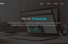 Threeangle Landing Page Template PSD