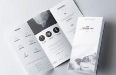 Branding Identity Set PSD