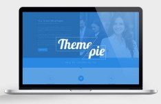 Themepie One Page PSD Web Template