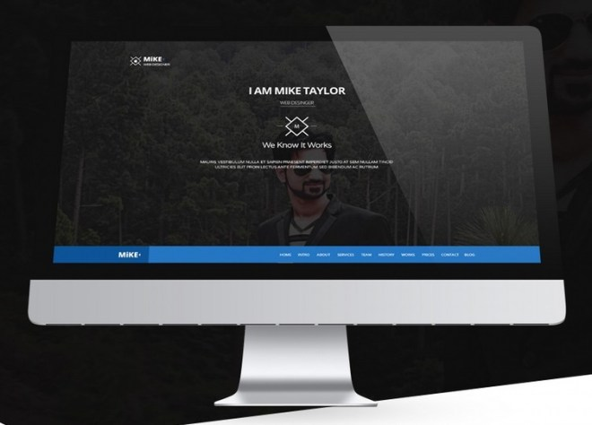 Mike One Page Website Template PSD