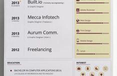 Clean Resume CV Vector Templates (3 Colors)