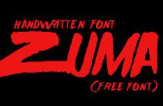 Zuma Handwritten Font