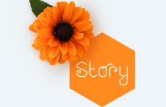 Honeycomb Font Family