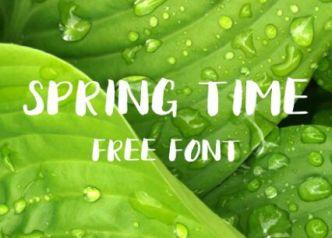 Spring Time Brush Font