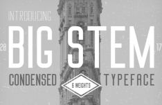 Big Stem Typeface