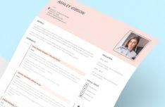 Clean CV Resume Template PSD