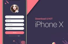 iPhone X Form UI Kit