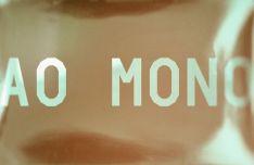 AO Mono Display Font