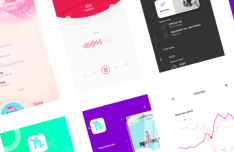 Muse - Flat Mobile UI Kit