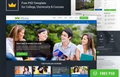 Royal Education Web Templates PSD-min
