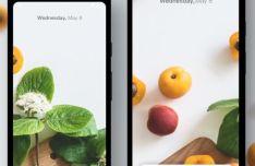 Google Pixel 3a & 3a XL Sketch Mockup