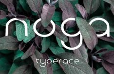 Noga Display Typeface