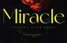 Miracle Display Font