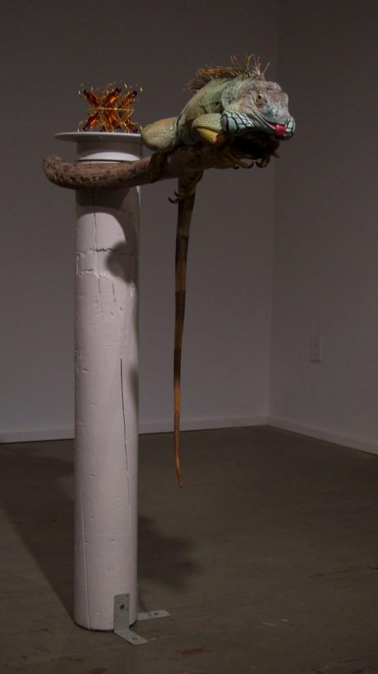 Neodymium, 2011