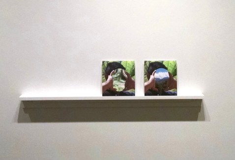 """Installation view, """"First Scene"""", Archival Pigment on Dibond, 8 ¼ x 7 ¾ inches, 2015 and """"Second Nature"""", Archival Pigment on Dibond, 8 ¼ x 7 ¾ inches, 2015."""
