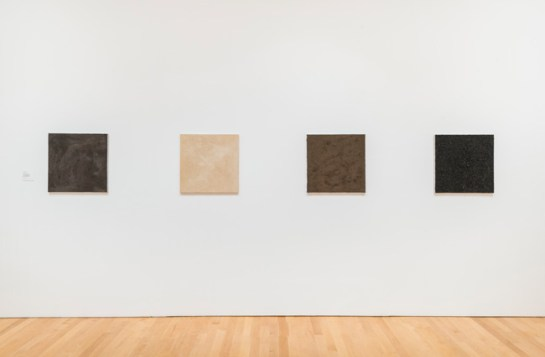 Installation view, Into Dust: Traces of the Fragile in Contemporary Art Courtesy Philadelphia Museum of Art, photograph by Tim Tiebout