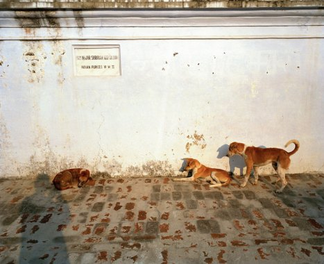 Untitled, 20062011 (negative); 2015 (print). Sunil Gupta, Canadian (born India), active London and Delhi, born 1953. Inkjet print, Image: 17 7/8 × 22 inches (45.4 × 55.9 cm) Sheet: 20 1/16 × 24 1/16 inches (51 × 61.1 cm). Sunil Gupta courtesy SepiaEYE.