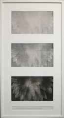 """Pati Hill, A Swan: An Opera in Nine Chapters (detail of Chapter 8), 1978, installation of thirty-two captioned black and white copier prints, framed: 38"""" x 20 1⁄2"""" ; Courtesy Estate of Pati Hill"""