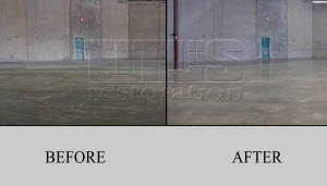 Carpet To Polished Concrete Transition
