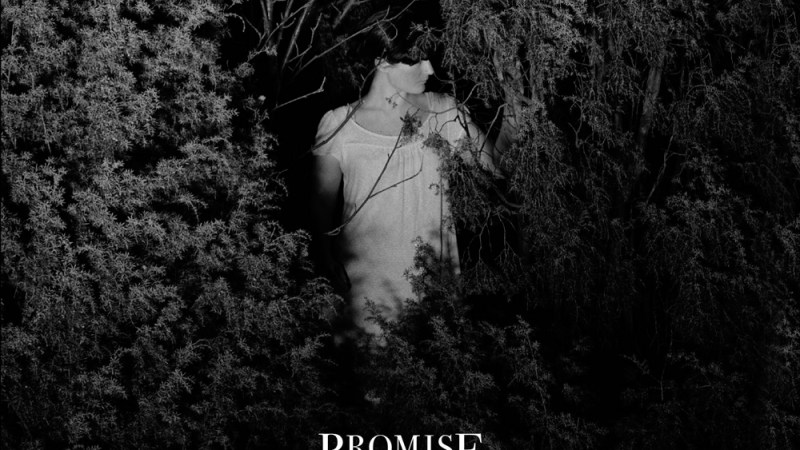 Promise and the Monster – Transparent Knives