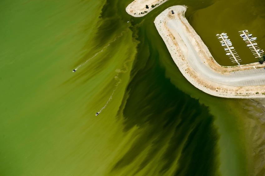 Foto del giorno, lago utah