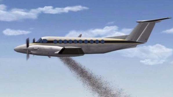 Bombe di semi